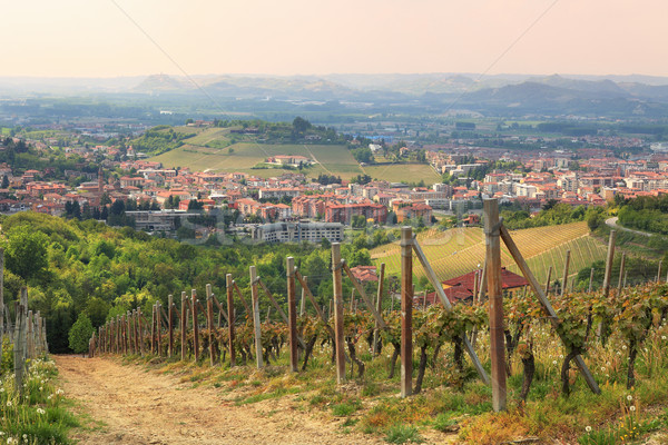 Aerial view on Alba from surrounding hills. Stock photo © rglinsky77