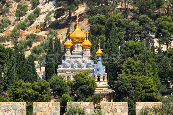 Kilise Kudüs İsrail zeytin mimari tatil Stok fotoğraf © rglinsky77