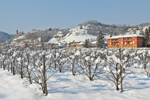 Kırsal tarla kapalı kar İtalya ağaçlar Stok fotoğraf © rglinsky77