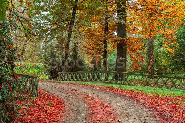Autumnal park in Italy. Stock photo © rglinsky77