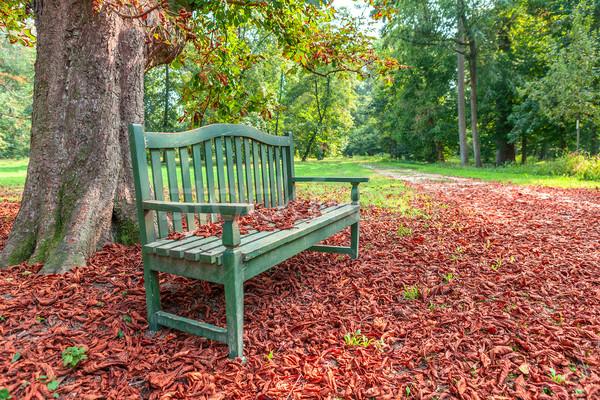 Bank sonbahar park ahşap ağaç zemin Stok fotoğraf © rglinsky77
