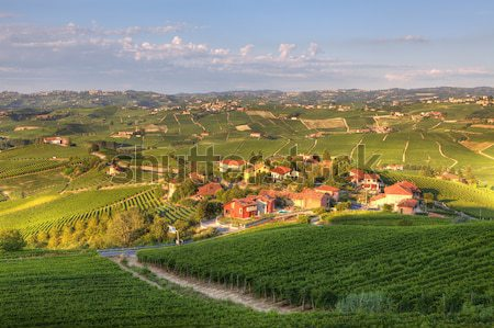 Town of Barolo among hills. Piedmont, Italy. Stock photo © rglinsky77