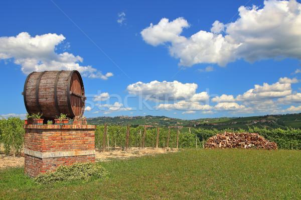 Wine barrel and vineyards in Piedmont, Italy. Stock photo © rglinsky77