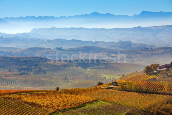 Tepeler İtalya sonbahar dağ turuncu Stok fotoğraf © rglinsky77