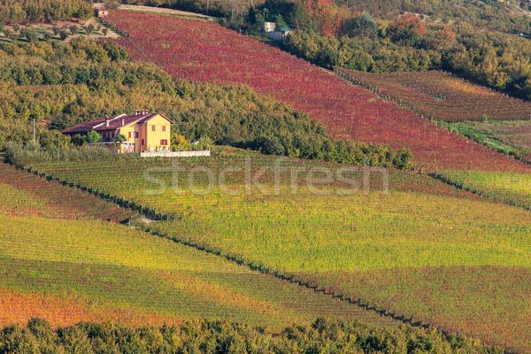 Kırsal ev İtalya sonbahar kuzey manzara Stok fotoğraf © rglinsky77