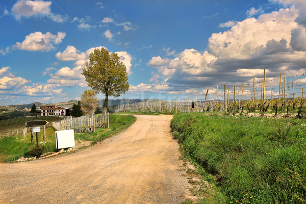 Rural road under cloudy sky. Piedmont, Italy. Stock photo © rglinsky77