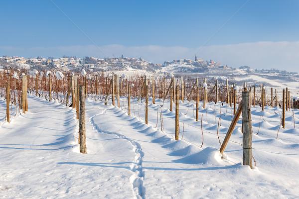 İtalya alan kapalı beyaz kar mavi gökyüzü Stok fotoğraf © rglinsky77