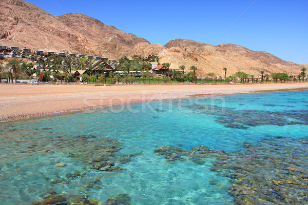 Red Sea shoreline. Eilat, Israel. Stock photo © rglinsky77
