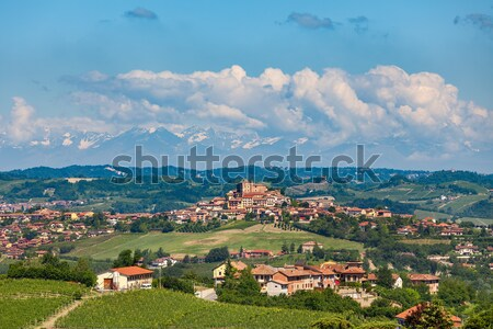Hills of Langhe in Piedmont, northern Italy. Stock photo © rglinsky77