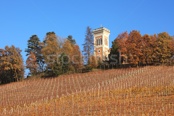 Hills and vineyards of Piedmont at fall. Northern Italy. Stock photo © rglinsky77