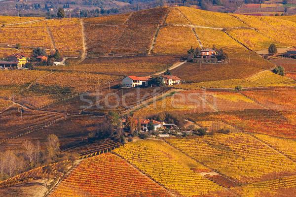 Tepeler sonbahar renkli kuzey İtalya ev Stok fotoğraf © rglinsky77