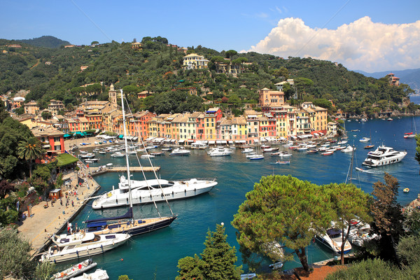 Aerial view on Portofino, Italy. Stock photo © rglinsky77