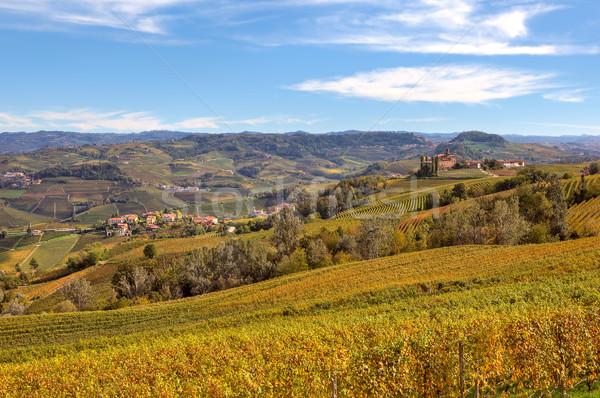 Sonbahar görmek İtalya sarı üzüm yaprakları Stok fotoğraf © rglinsky77