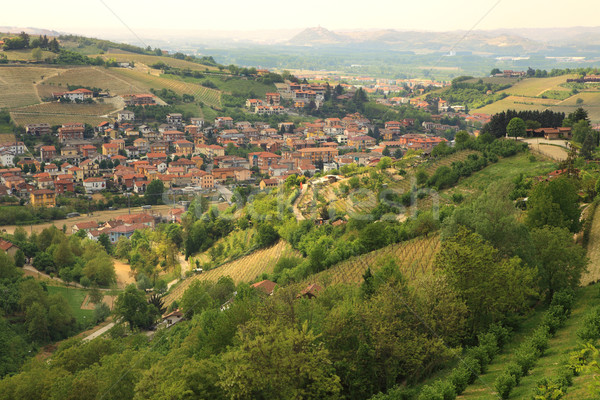 Aerial view on small town among hills. Stock photo © rglinsky77