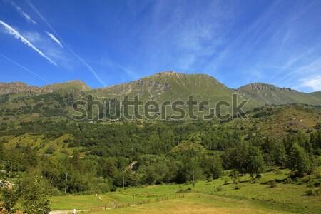Alanları alpler görmek güzel yeşil Stok fotoğraf © rglinsky77