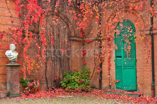 Sarmaşık tuğla duvarlar kırmızı yaprakları büyümek Stok fotoğraf © rglinsky77