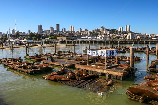 Iskele San Francisco ABD deniz ahşap Stok fotoğraf © rglinsky77