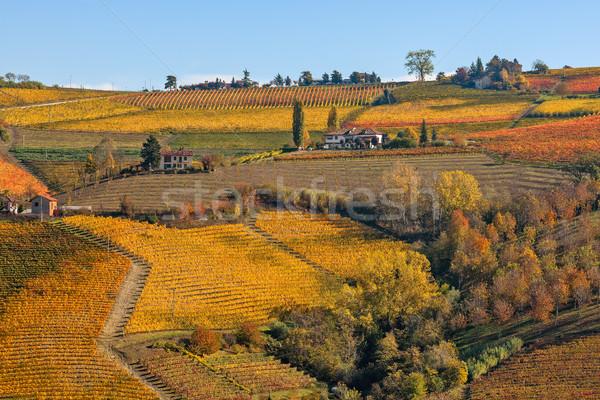 Kleurrijk heuvels noordelijk Italië huis Stockfoto © rglinsky77