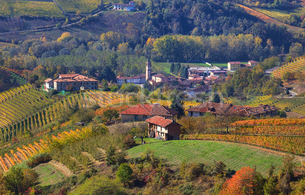Faible village Italie collines nord Photo stock © rglinsky77