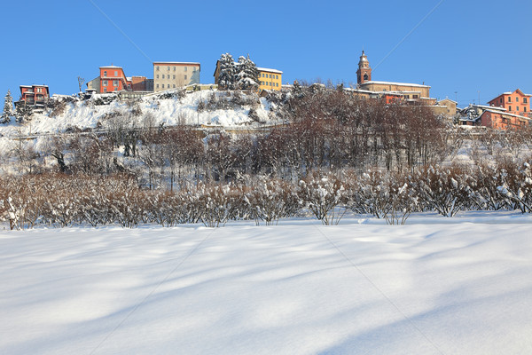 Small town on the hill covered by snow. Stock photo © rglinsky77