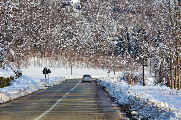 Voiture route champs arbres couvert neige Photo stock © rglinsky77