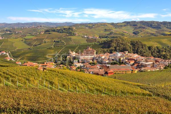 Ver Itália cidade amarelo uva Foto stock © rglinsky77