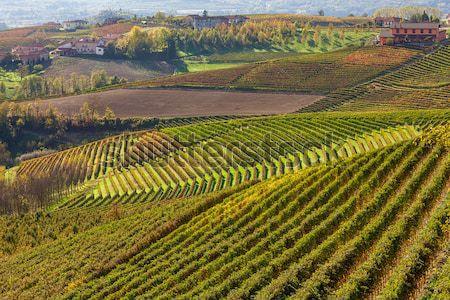 Ver Itália hills norte natureza Foto stock © rglinsky77