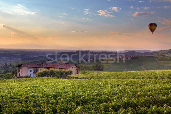 Sunset in Piedmont. Northern Italy. Stock photo © rglinsky77