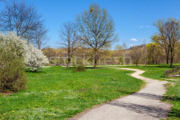 Primavera parco Italia erba verde foresta verde Foto d'archivio © rglinsky77