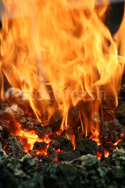 Alevler yangın dikey görüntü kömür Stok fotoğraf © rglinsky77