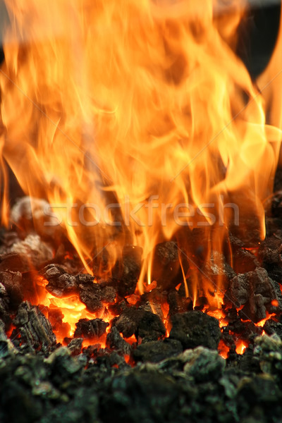 Flammes feu vertical image charbon Photo stock © rglinsky77