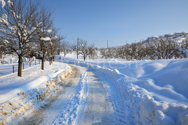 Snowy road. Piedmont, Italy. Stock photo © rglinsky77