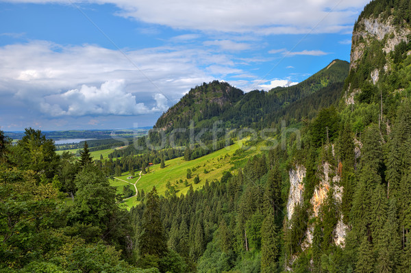 Green meadow among mountains in Bavaria, Germany. Stock photo © rglinsky77