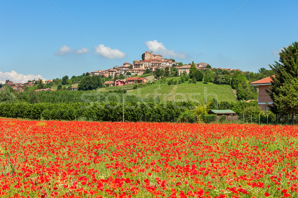 Alan kırmızı gelincikler İtalya kırsal mavi gökyüzü Stok fotoğraf © rglinsky77