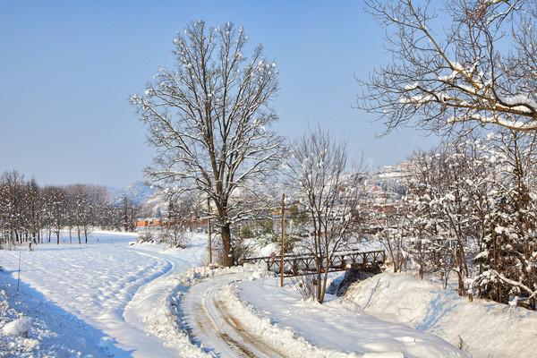 Road on snowy field. Piedmont, Italy. Stock photo © rglinsky77
