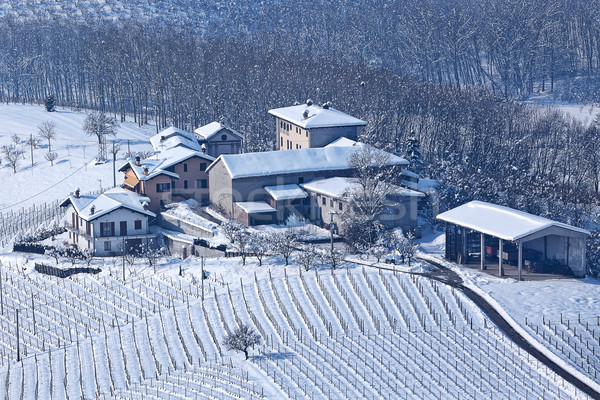 Rural houses covered with snow in Piedmont, Italy. Stock photo © rglinsky77
