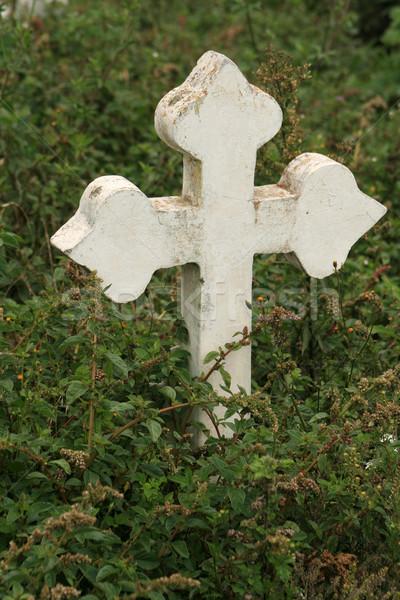 Grobu znacznik roślin cmentarz Zdjęcia stock © rhamm