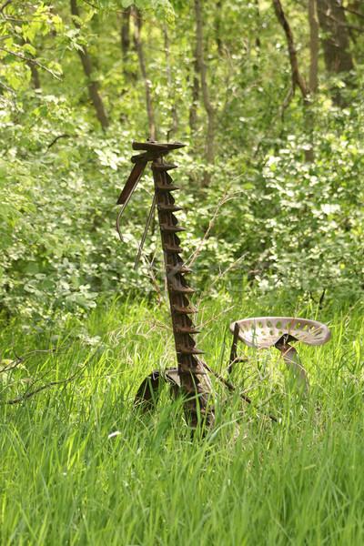 Antiguos hierba campo abandonado primavera Foto stock © rhamm