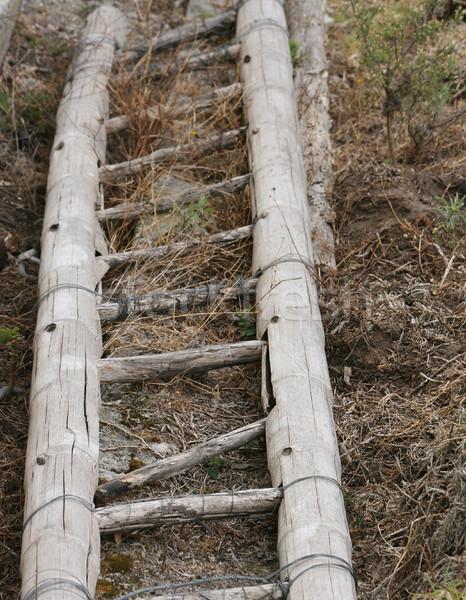 Bambu escada feito à mão madeira gramado Foto stock © rhamm