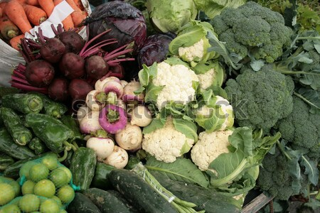 Yucca Cucumbers Lettuce and Cauliflower Stock photo © rhamm