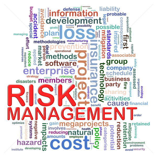 Risk management word tags Stock photo © ribah