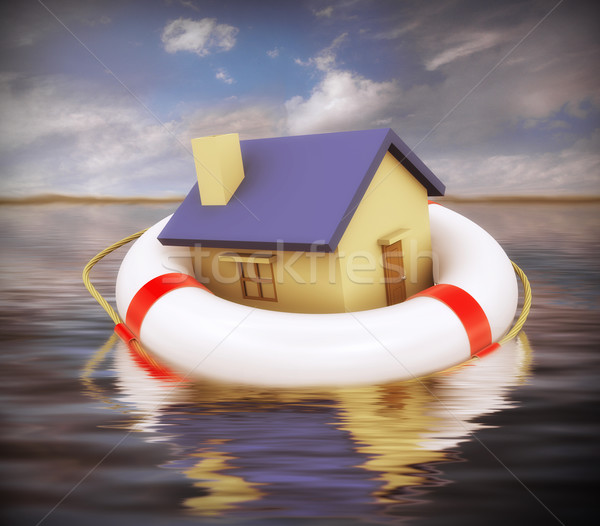 3d home on life preserver Stock photo © ribah