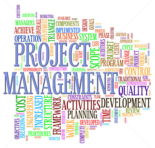 Project management wordcloud Stock photo © ribah