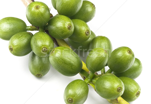 Green coffee beans Stock photo © ribeiroantonio