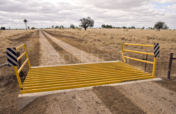 Steel reinforced cattle grid Stock photo © ribeiroantonio