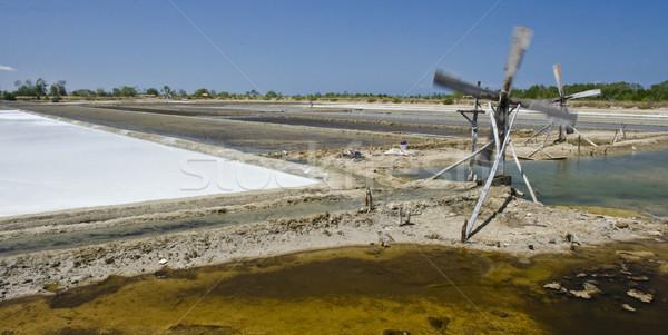 Sea salt Stock photo © ribeiroantonio