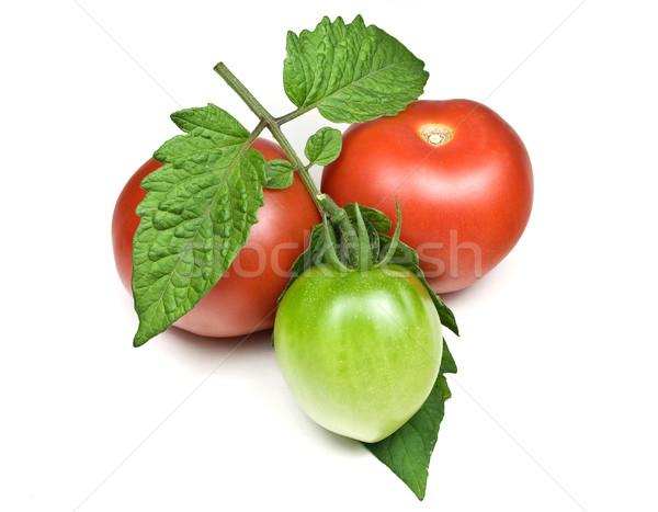 Stock fotó: Piros · zöld · paradicsomok · izolált · fehér