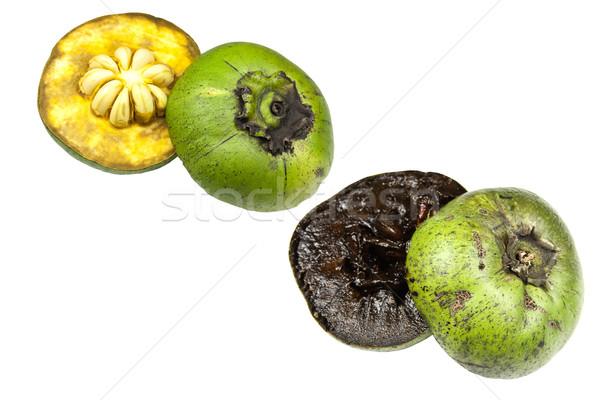黒 緑 右 チョコレート 熱帯 ストックフォト © ribeiroantonio
