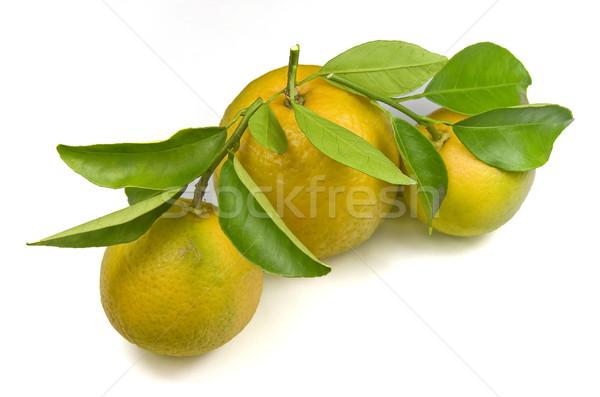 オーガニック オレンジ 全体 葉 白 新鮮な ストックフォト © ribeiroantonio