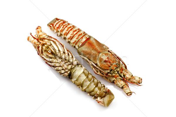 Champagne Lobster Stock photo © ribeiroantonio